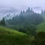 Регіональний ландшафтний парк Надсянський