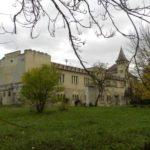 Замок Шенборна (Винзавод Берегівський), Берегово