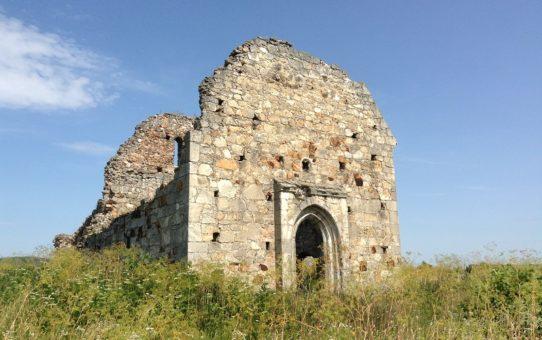 kostel-ioanna-xrestitelya-dominikanskij-kostel-muzhiyevo