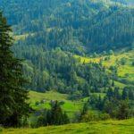 Похід на Хребет Кострича