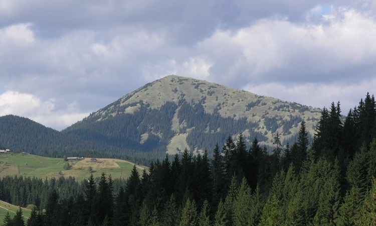 Hora-Homyak