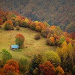 Відпочинок у Карпатах восени: 5 цікавих ідей та 5 переваг